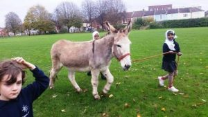 Children leading a donkey at a donkey party in Swindon.