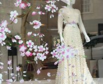 Hand painted cherry blossom shop window display mural in Cheltenham.