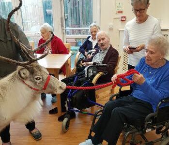 Care home reindeer visits in Gloucester and Bristol.