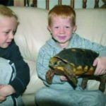 Children holding a tortoise at an animal party in Bristol.