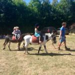 Donkey rides at a summer event in Cheltenham.